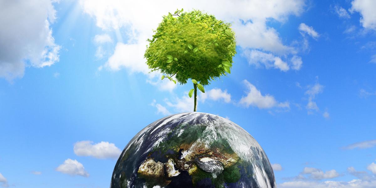 tree-on-the-earth_MkrYfcSd (2) (1)-1